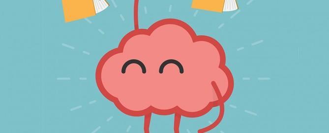 Inzicht in brein: handig bij leren!