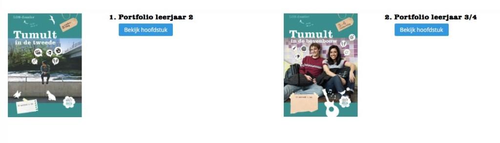 De portfoliofunctie in Mijn Tumult: hoe werkt het? Wat houdt het Mijn Tumult-portfolio in?