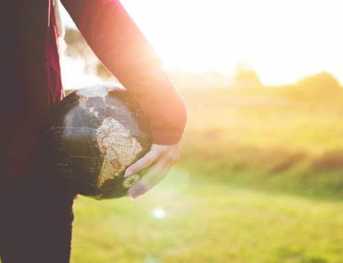 De leraar als professional in een digitale wereld: de weg naar digitale vaardigheid